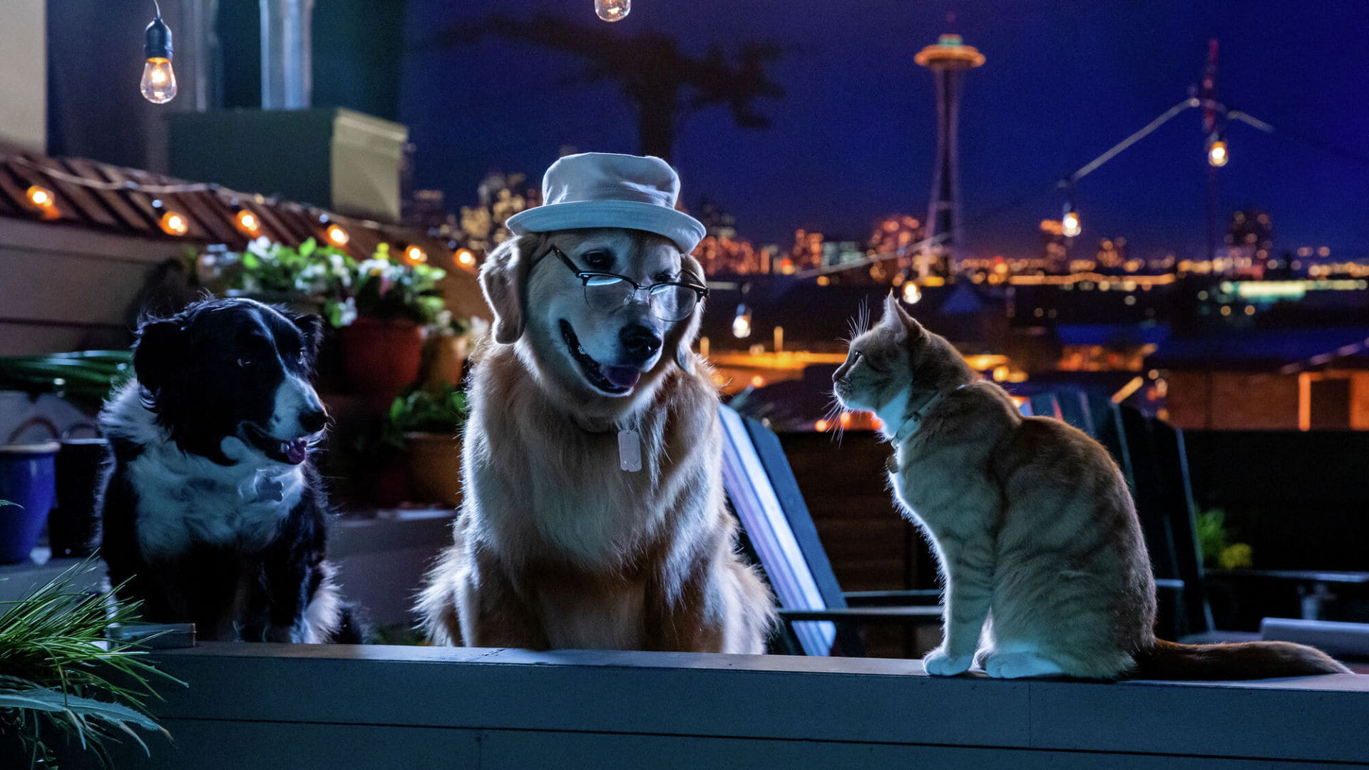 Cats & Dogs 3: Paws Unite 2020 Watch Online Full Movie